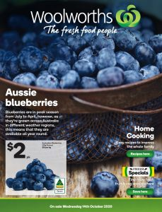 Woolies Catalogue 14th October - 20th October 2020 Next Week Preview